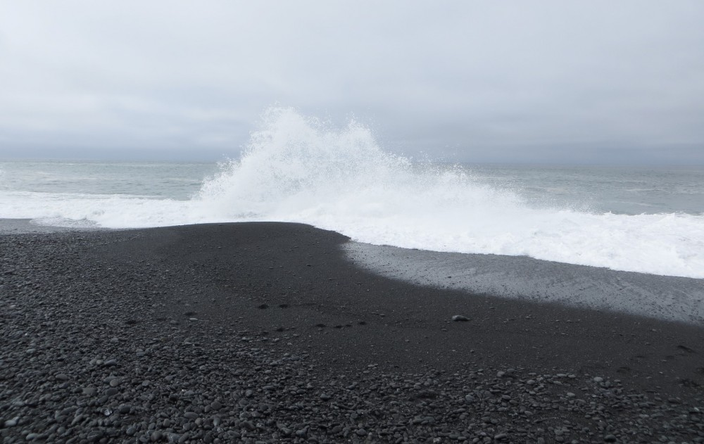 Image result for black beach ca