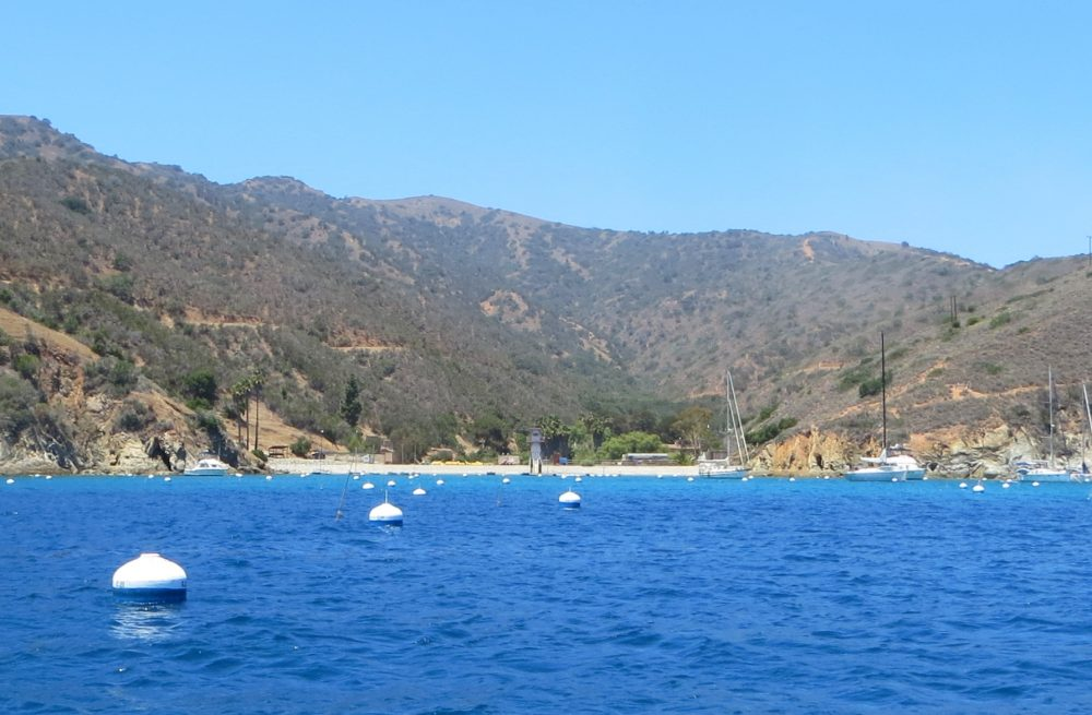 Directions To Catalina Island Ferry