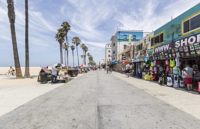 Image result for venicebeach