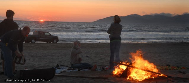 California Beach Bonfire1