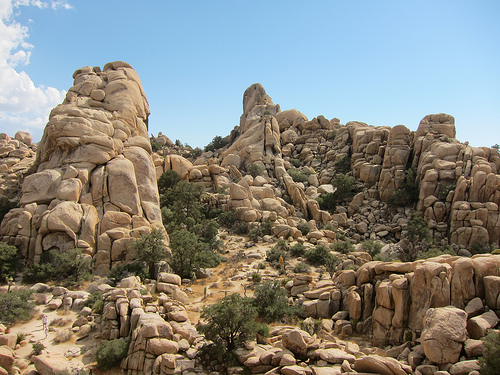 Joshua Tree National Park Indio CA California Beaches